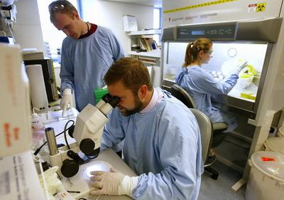 Лаборатория стволовых клеток